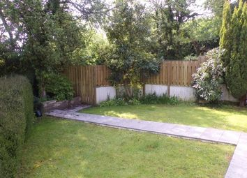 Thumbnail 3 bed detached bungalow to rent in Tyshute Lane, St. Austell