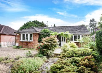 Thumbnail 3 bed detached bungalow for sale in Barkham Ride, Finchampstead, Berkshire