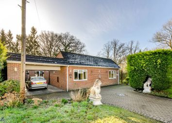 Thumbnail 4 bed bungalow to rent in Queens Road, Bisley