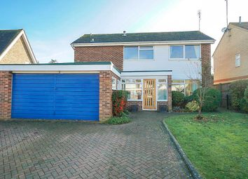 Thumbnail 4 bedroom detached house to rent in The Ryde, Hatfield