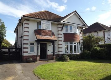 Thumbnail Property to rent in Meon Road, Boscombe, Bournemouth