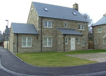 Thumbnail 5 bed detached house for sale in West Farm Grange, Medomsley, Consett