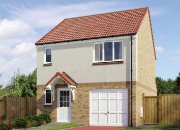 "Thumbnail 3 bedroom detached house for sale in ""The Fortrose "" at Lignieres Way, Dunbar"