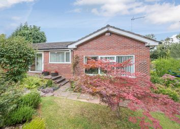 Thumbnail 3 bed bungalow for sale in Maryvale, Berrington Road, Tenbury Wells