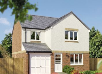 "Thumbnail 4 bedroom detached house for sale in ""The Leith"" at Milnathort, Kinross"
