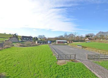 Thumbnail 4 bed equestrian property for sale in Boreham Lane, Wartling, Hailsham