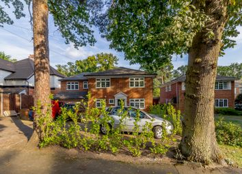 Thumbnail 6 bed detached house for sale in Firwood Drive, Camberley
