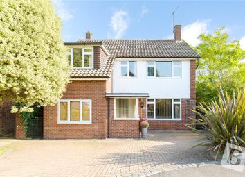 Thumbnail 4 bed detached house for sale in Tabors Avenue, Great Baddow, Chelmsford