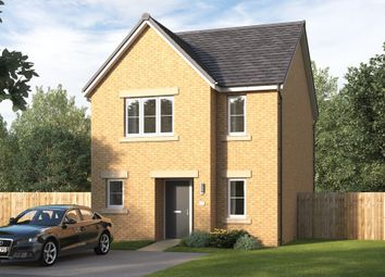 """Thumbnail 3 bed detached house for sale in """"The Hivestone"""" at Low Gill View, Marton-In-Cleveland, Middlesbrough"""