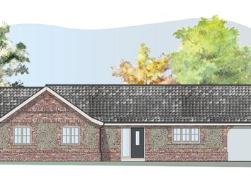 Thumbnail 4 bed detached bungalow for sale in Hale Road, Ashill, Thetford