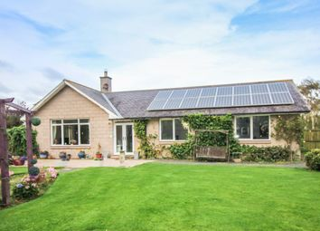 Thumbnail 3 bed bungalow for sale in South Road, Belford