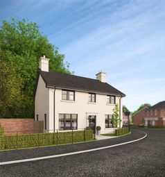 Thumbnail 4 bedroom detached house for sale in 25, Belvoir Park, Belfast