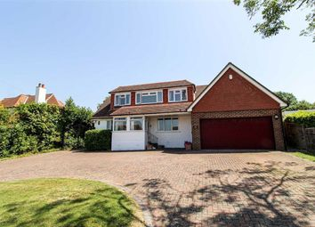 7 bed detached house for sale in Parkwood Road, Hastings, East Sussex TN34