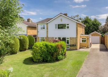 Thumbnail 5 bed detached house for sale in The Woodlands, Broom, Biggleswade, Bedfordshire