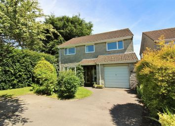 Thumbnail 4 bed detached house for sale in Combe St. Nicholas, Chard