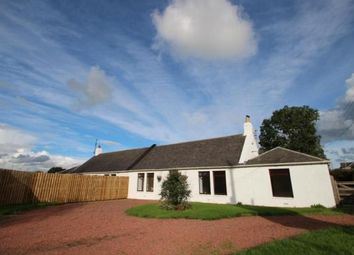 Thumbnail 3 bed equestrian property for sale in Pottery Cottage, Coalhall, Ayr, East Ayrshire