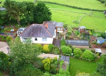 Thumbnail 2 bedroom detached bungalow for sale in The Mount, How Mill, Brampton, Cumbria.