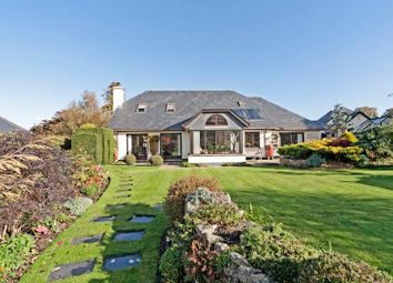 Thumbnail 3 bedroom detached house for sale in Chagford, Devon