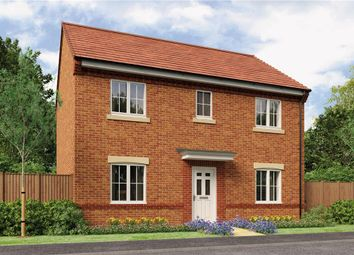 "Thumbnail 4 bedroom detached house for sale in ""The Buchan"" at Buttercup Gardens, Blyth"
