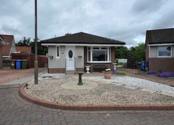 Thumbnail 2 bedroom bungalow for sale in 35 Doo'cot Brae, Alloa, 2Np, UK