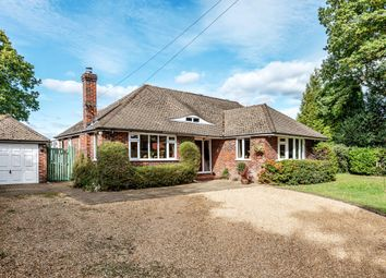 Thumbnail 4 bed detached bungalow for sale in Sutton Green Road, Sutton Green, Guildford