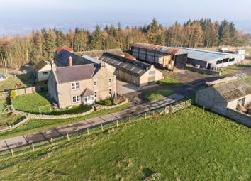Thumbnail Farm for sale in Corbridge, Northumberland