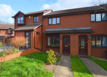 2 bed terraced house for sale in Ilex Close, Exeter EX4