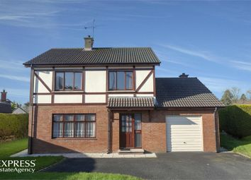 Thumbnail 3 bed detached house for sale in Forthill Rise, Cookstown, County Tyrone