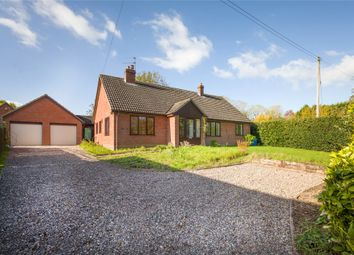 Thumbnail 3 bed bungalow for sale in Acton Green, Acton Beauchamp, Worcester
