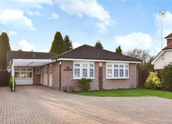 Thumbnail 3 bed detached bungalow for sale in Sandhurst Lane, Blackwater, Surrey