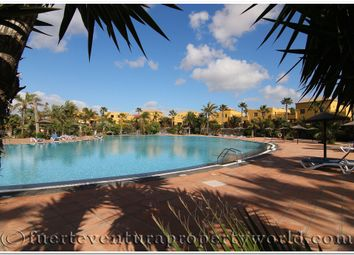 Thumbnail 1 bed apartment for sale in Coralejo, Fuerteventura, Canary Islands, Spain
