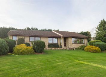 Thumbnail 3 bed detached bungalow for sale in Five Acres, Wooler, Northumberland