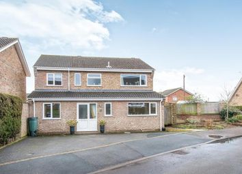 Thumbnail 4 bed property for sale in Taverham, Norwich, Norfolk