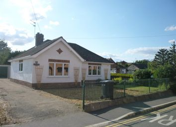 Thumbnail 2 bed detached bungalow to rent in Theatre Street, Swaffham