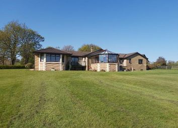 Thumbnail 4 bed detached bungalow to rent in Ashdale, Indians Road, Balfron Station