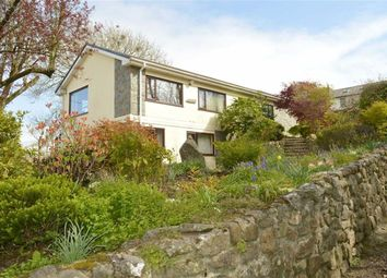 Thumbnail 4 bed detached bungalow for sale in Landimore, Gower, Swansea