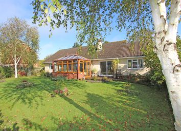 3 bed detached bungalow for sale in Willand Old Village, Willand EX15