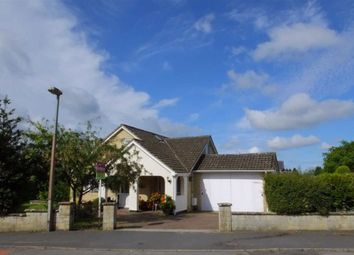 Thumbnail 5 bed detached bungalow for sale in Roman Crescent, Swindon, Wiltshire