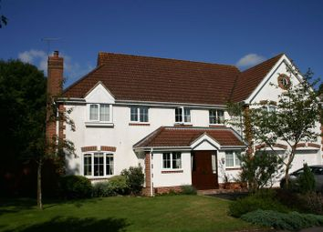 Thumbnail 5 bed detached house to rent in Hornbeam Gardens, West End, Southampton