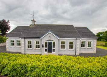 Thumbnail 4 bed property for sale in 89A Ballynease Road, Portglenone