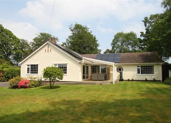 Thumbnail 4 bed detached bungalow for sale in Hinton Wood Avenue, Highcliffe, Christchurch, Dorset