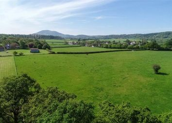 Thumbnail Land for sale in Leigh Sinton, Malvern, Worcestershire