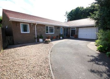 Thumbnail 3 bed bungalow for sale in Jenison Close, School Aycliffe, Newton Aycliffe