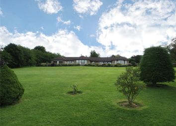 Thumbnail 4 bed bungalow for sale in Newton Of Ferintosh, Conon Bridge, Dingwall, Ross-Shire