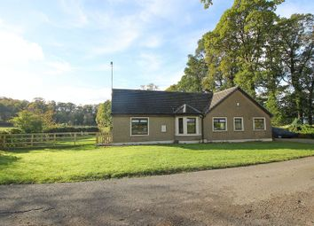 Thumbnail 4 bed bungalow for sale in Boquhan, Stirling