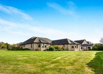 Thumbnail 4 bed bungalow for sale in Myreside Drive, Inverkeilor, Arbroath