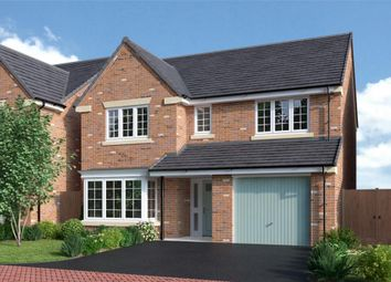 "Thumbnail 4 bedroom detached house for sale in ""Ashbury"" at Back Lane, Somerford"