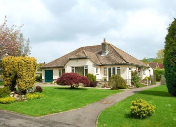 Thumbnail 3 bed bungalow to rent in Knotts Close, Child Okeford, Blandford Forum, Dorset