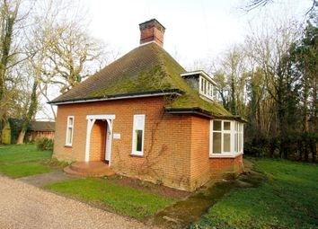 Thumbnail 3 bed detached house to rent in London Road, Suton, Wymondham, Norfolk
