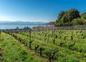 Thumbnail Land for sale in Dully, Vaud, CH